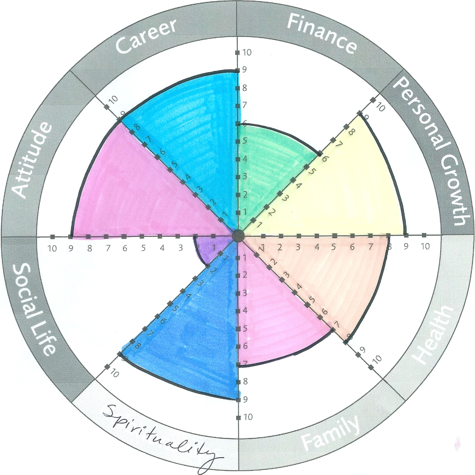 What Does Your Wheel of Life Look Life?